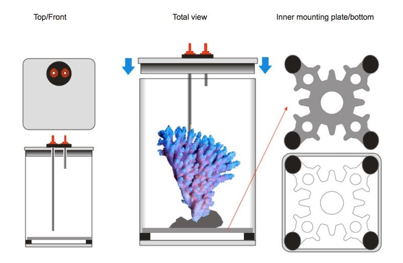 genio safebox - la scatola magica per il trasporto di pesci e/o coralli