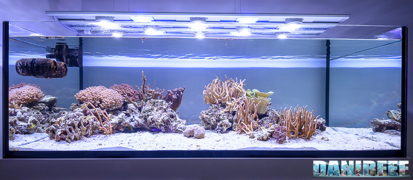 Plafoniera a led CEAB Slide&Led sull'acquario di jonathan betti