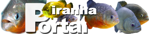 piranhaportal
