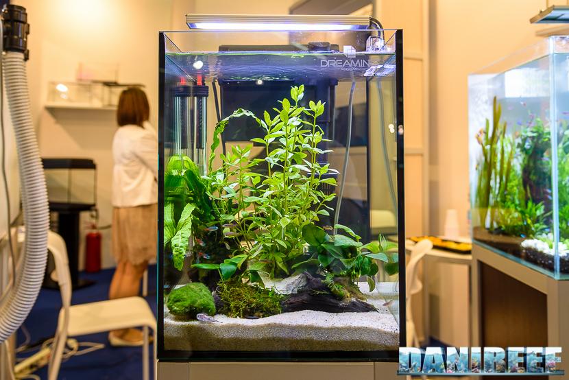 I nano acquari sono il presente e probabilmente anche il futuro