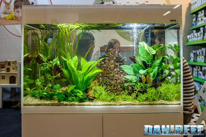 zoomark international 2015: stand aquael - acquario con discus
