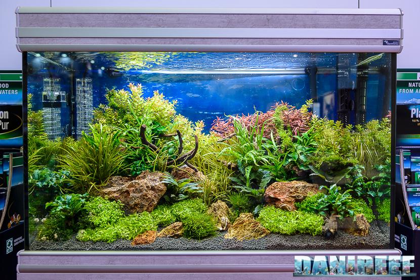 Acquari in arredamento zoomark lo stand zolux jbl con il for Acquario casa prezzi