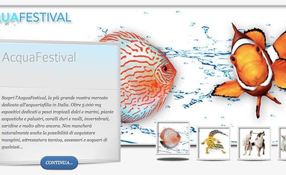 aquafestival_2015_by_petsfestival