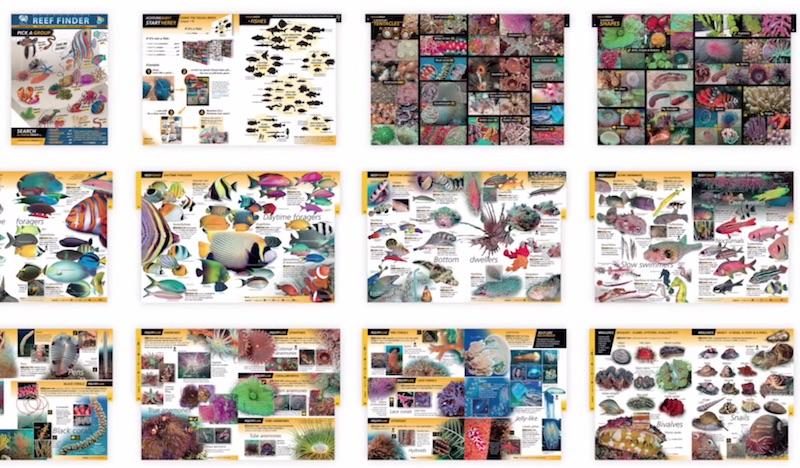 Reef Finder by BioGuide