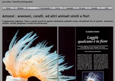 photomazza_04_articolo_coralli