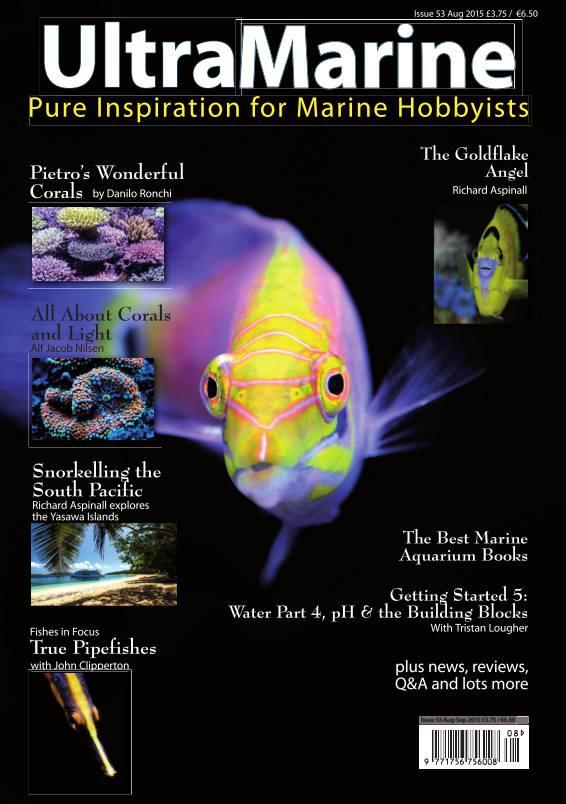 ultramarine magazine n. 53 con l'acquario di pietro romano