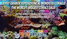 4000 coralli sono un buon motivo per visitare il PetsFestival 2015!
