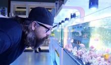 Envelope – la busta – un film sull'essere acquariofili – 7 minuti da vedere