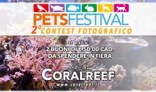 Affrettatevi! PetsFestival mette in palio 50 euro di coralli ma solo fino a domani!