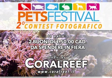 contest petsfestival coralreef