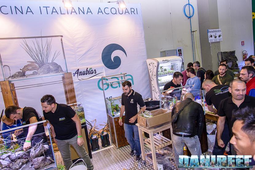 2015_10 petsfestival gaia italia aquascaping 03