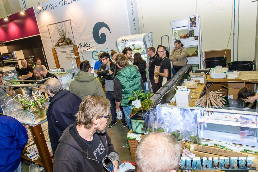 2015_10 petsfestival gaia italia aquascaping 06