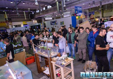 2015_10 petsfestival gaia italia aquascaping 13