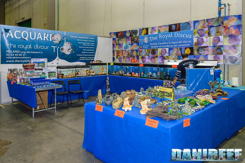 2015_10 petsfestival trd royal discus 01