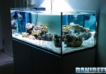 2009_11 acquario allestimento danireef vasca e rocciata 01