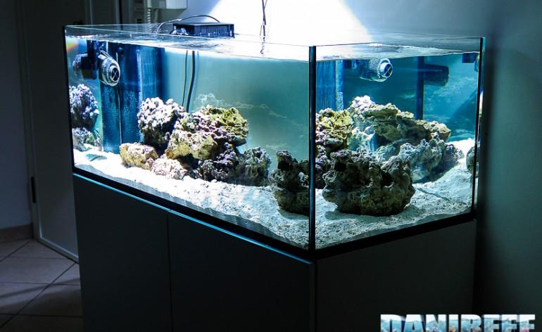 la pianificazione dell acquario marino quanti litri