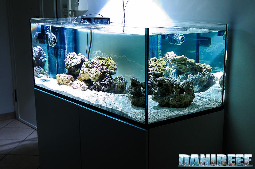 La pianificazione dell acquario marino quanti litri for Acquario 120 litri