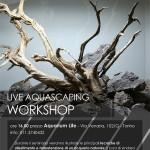 Live Aquascaping Workshop