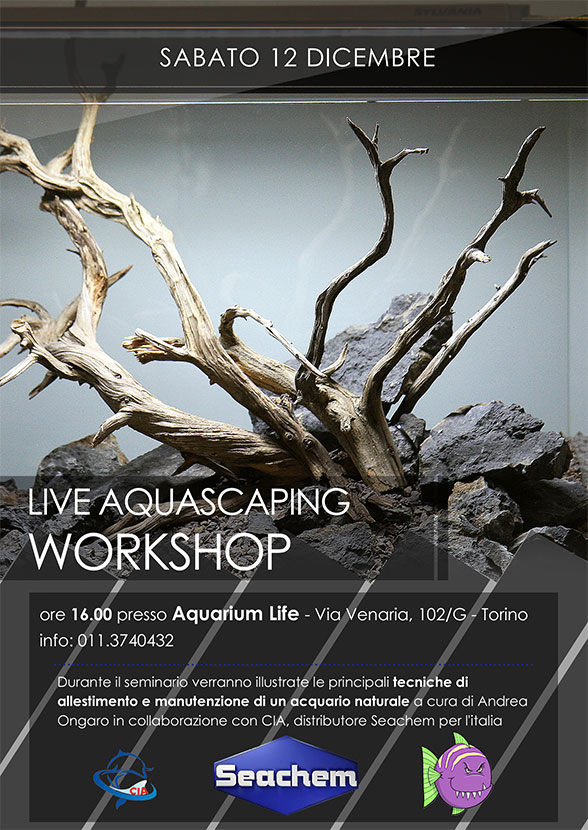 flyer_Aquarium_life_workshop_andrea_ongaro_12_dicembre