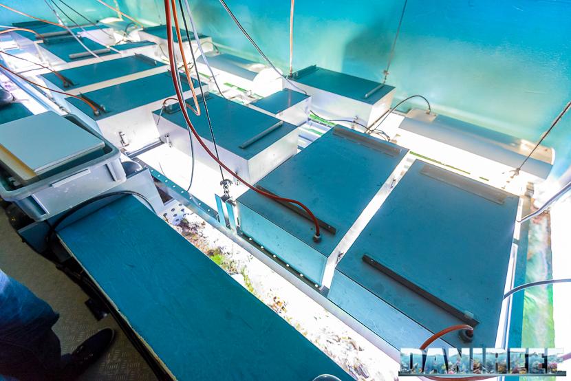 Il sistema di illuminazione dell'acquario