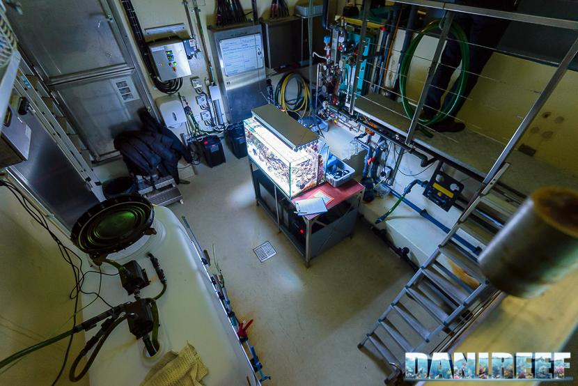 Il locale tecnico visto dall'alto, si noti a sinistra il recipiente per i cambi d'acqua