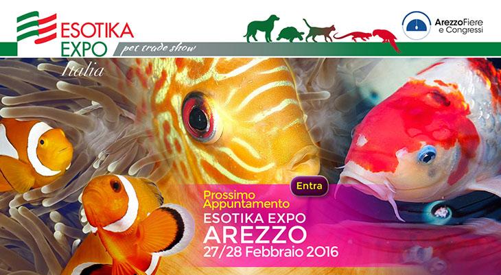 exotica-arezzo-2016