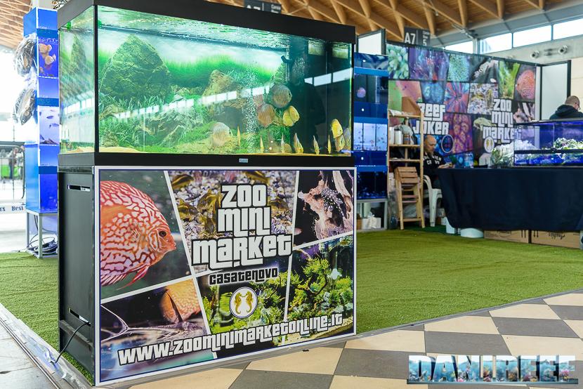 2016_03 Animal Show Zoo Mini Market Casatenovo 14