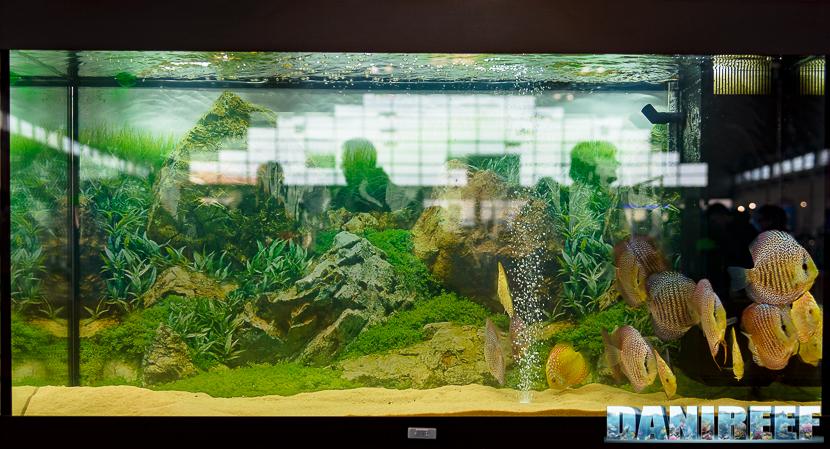 2016_03 Discus prezzo lo stand Zoo Mini Market di Casatenovo all'Animal Show 15