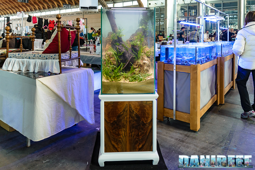 2016_03 Animal Show Crystal Reef acquario a scarpata 34