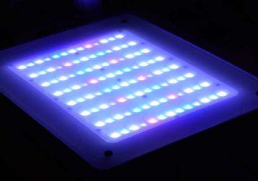 L'aspetto della plafoniera CoralCare Philips con gli elementi ottici davanti ai led che permettono la diffusione della luce con angolo maggiore di 63°.