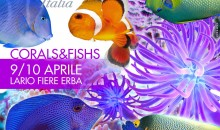 Esotika Milano 2016 ad Erba questo fine settimana, 9-10 aprile 2016