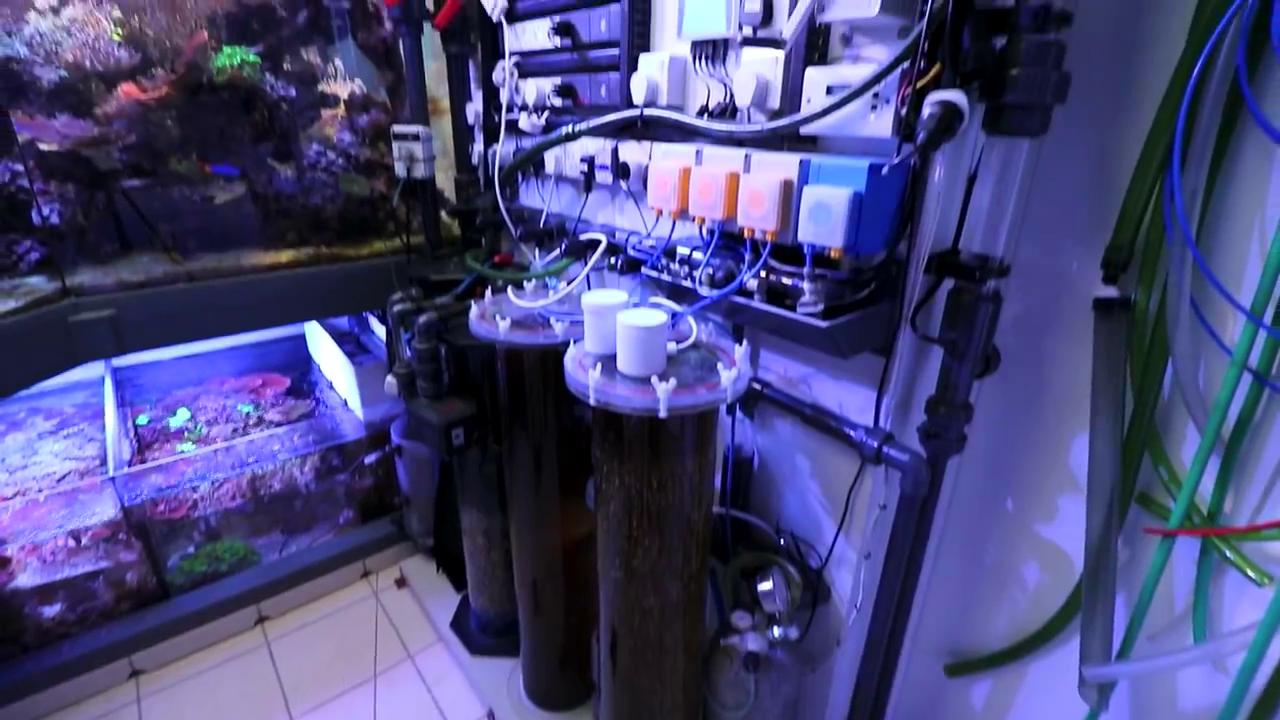 acquario gigante di Martin Lakin: 5000 litri - la sump