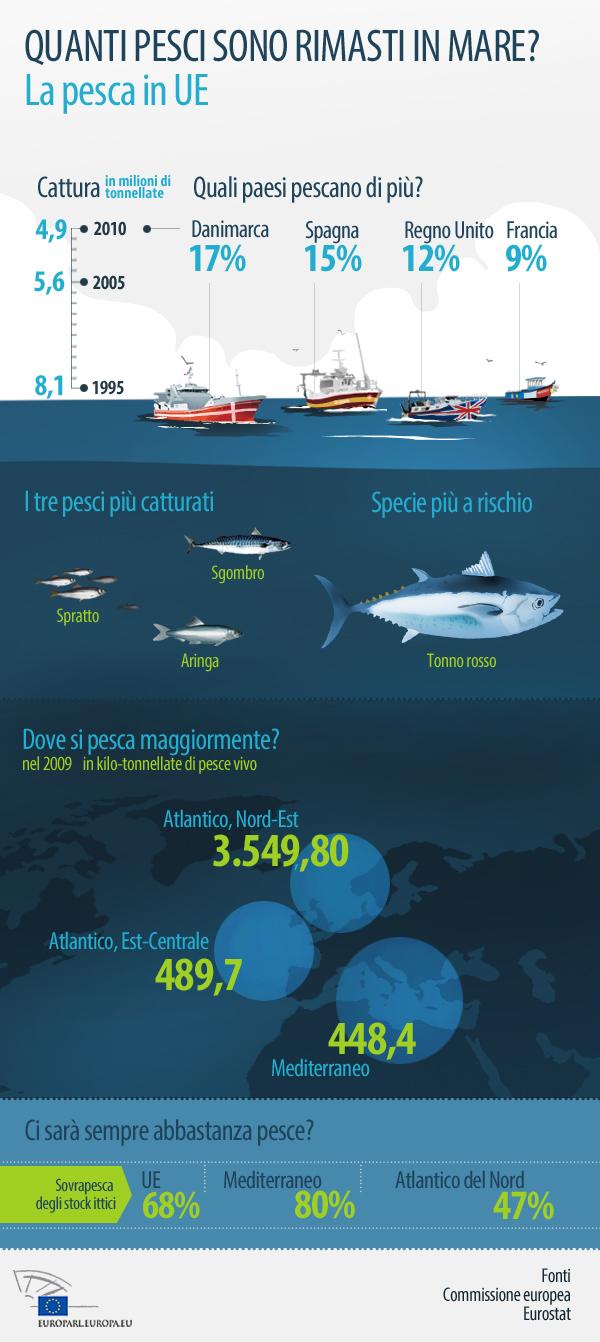 quanti-pesci-in-mare