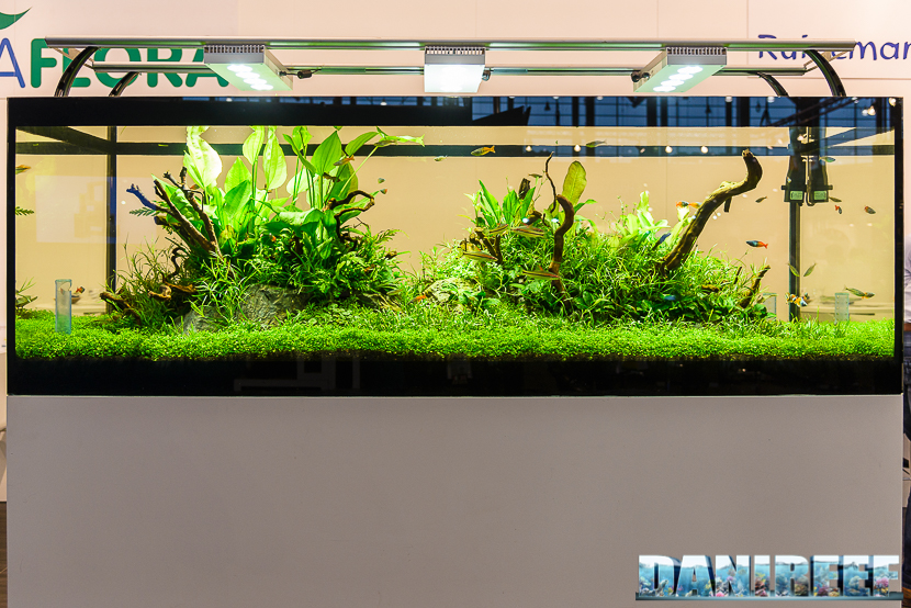 2016_05 Interzoo Norimberga De Jong MarineLife Aquaflora Layout Aquascape 01
