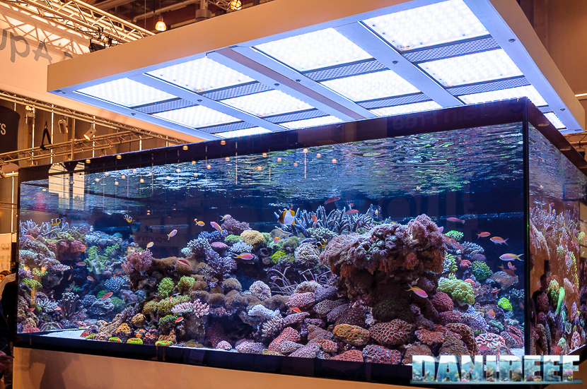2016_05 Interzoo Norimberga De Jong MarineLife Layout aquario marino 01