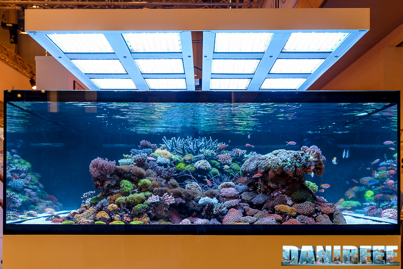 2016_05 Interzoo Norimberga De Jong MarineLife Layout aquario marino 02