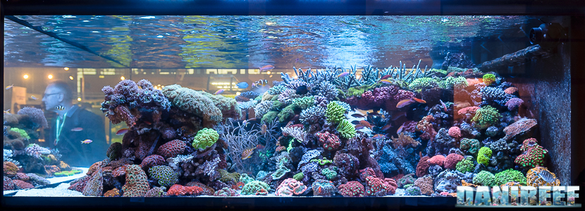 2016_05 Interzoo Norimberga De Jong MarineLife Layout aquario marino 03