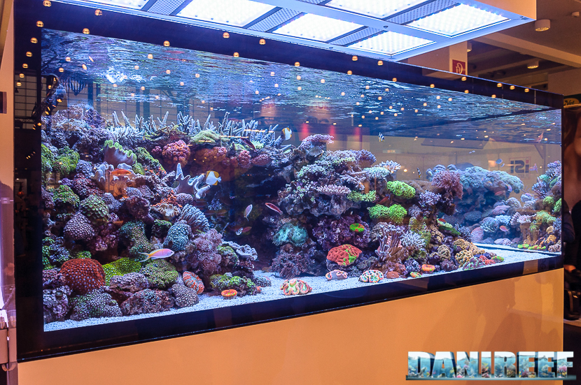 2016_05 Interzoo Norimberga De Jong MarineLife Layout aquario marino 06