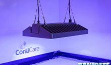 La Philips CoralCare finalmente in vendita in Italia