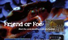 UltraMarine Magazine 57 con il Reportage dell'acquario dello zoo di Zurigo!