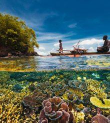"""""""Bright spots"""" tra le barriere coralline di tutto il mondo"""