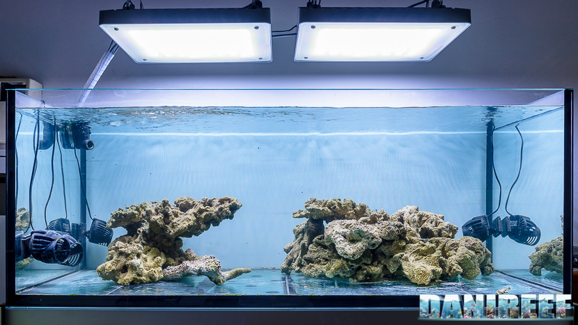 2016_08 Philips CoralCare on DaniReef Tank - layout and live rocks 01