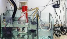 How to reduce the aquarium power consumption