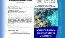 Master in Acquacoltura Ornamentale Marina presso l'Università di Ancona