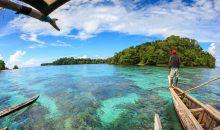 Come l'aumento di temperatura incide sul comportamento dei pesci (e dei dinoflagellati)