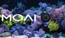 Il MOAI smart robot, pulisci vetri e non solo