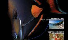 UltraMarine Magazine 59, oggi disponibile, parla dei cambi d'acqua