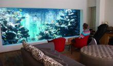 Un acquario marino da 37.000 litri nel proprio salotto. Un sogno!
