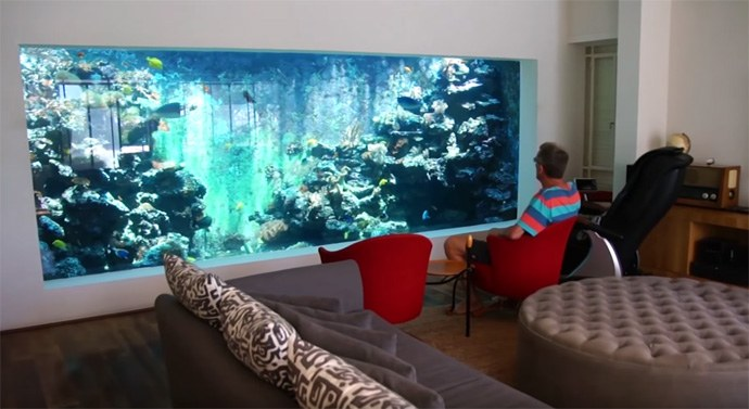 Un acquario marino da litri nel proprio salotto un for Filtro acquario fai da te