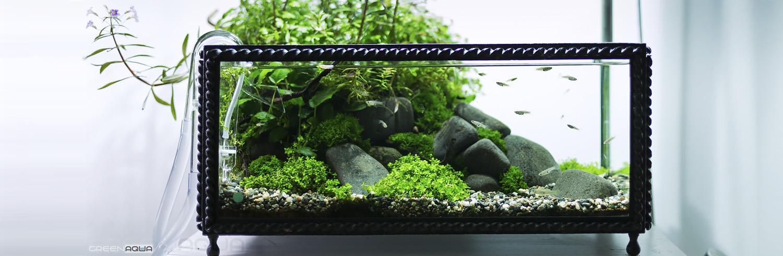 akvarium-016a